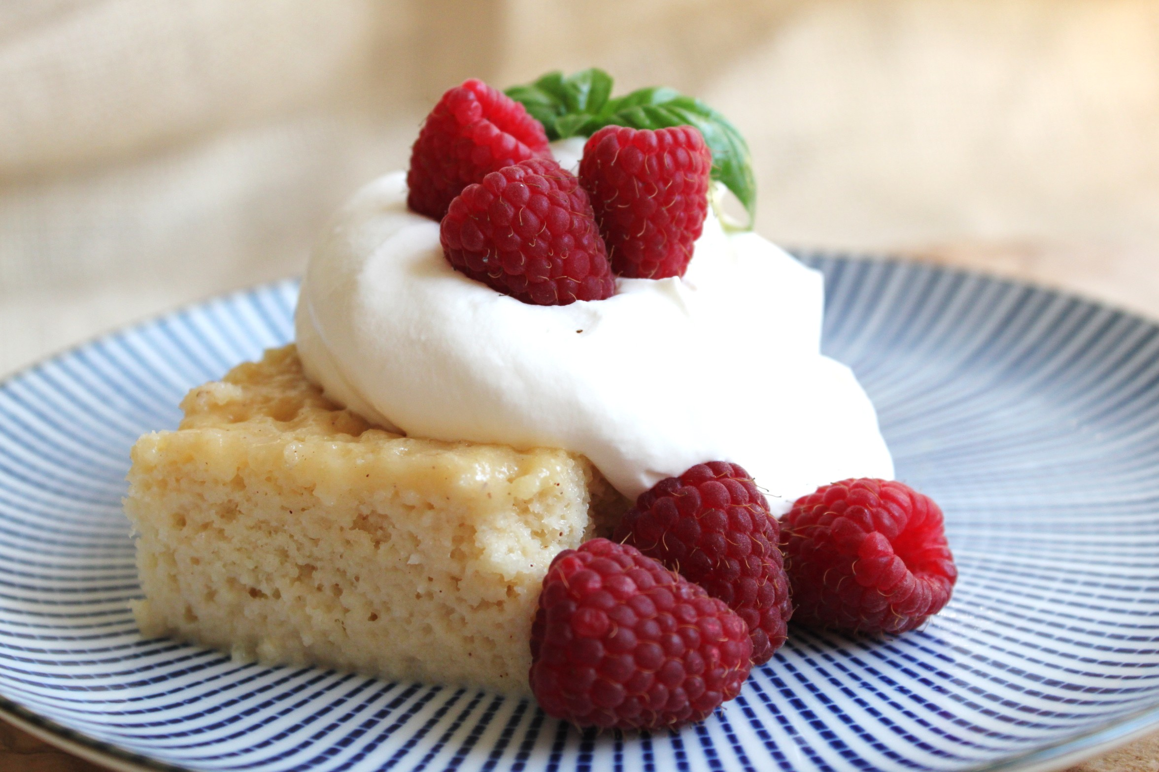 Tres Leches Cake with Berries | jessica burns